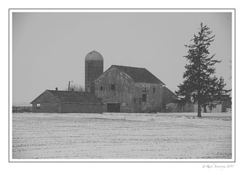 farm-yard-1-bnw-copy.jpg