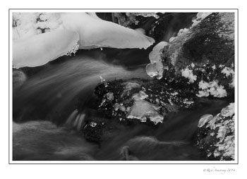 stream-4-frm-bnw-copy.jpg