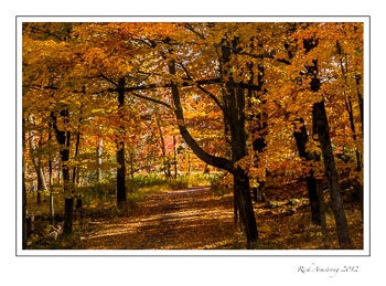 fall-scenic-8-frm.jpg